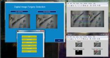 Digital Image Forgery Detection